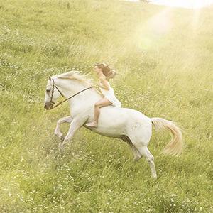 Pferdeshooting , Pferd, Tier, Frau, Natur, Foto, Fotoshooting, Shooting, romantisch, klassisch, gefühlsvoll, exklusiv, extravagant, frech, lustig, emotional, Momente, Fotografien, Fotograf, Fotostudio, schön, modern, Diez, Limburg, Hahnstätten, Holzheim, Gefühle, Emotionen, outdoor, draußen, Wiese, Porträt, reiten Galaopp